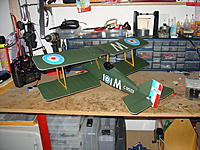 Name: DSC07419.jpg