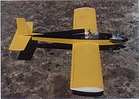 Name: Goldberg Tiger II-1.jpg