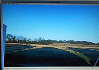 Name: back yard champ 043.jpg Views: 24 Size: 65.2 KB Description: