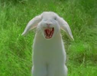 Name: bunny.png