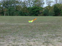 Name: CIMG6859.jpg