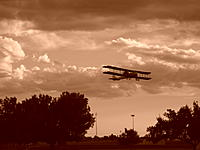 Name: DSCN1629.jpg