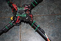 Name: DSC_3146.jpg