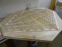 Name: DSC00461.jpg