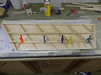 Name: DSC00919.jpg
