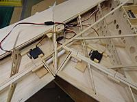 Name: DSC01310.jpg