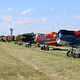 A row of T-6 Texans.