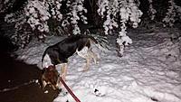 Name: first snow.jpg Views: 44 Size: 546.4 KB Description: