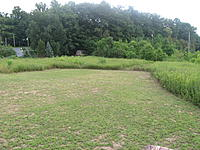 Name: My Field 004.jpg