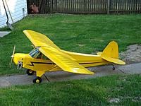 Name: pipercub.jpg