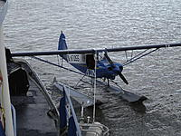 Name: Bristol Bay2010 140.jpg