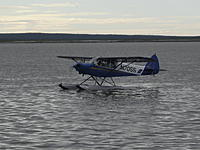Name: Bristol Bay2010 145.jpg