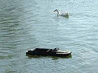 Name: duckmeetdukw.jpg