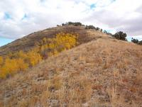 Name: ds ridge.jpg