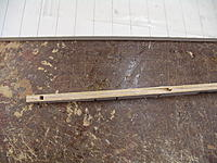 Name: DSC06156.jpg