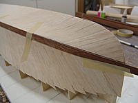Name: DSC06200.jpg