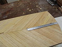 Name: DSC06204.jpg
