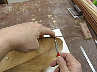 Name: DSC06206.jpg