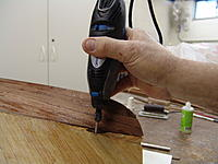 Name: DSC06216.jpg
