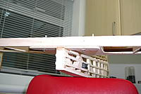 Name: P1020474.jpg