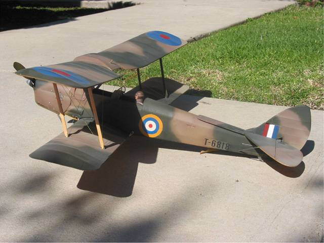 My GWS Tigermoth with a few changes, working wing wires, anti-stall strakes, wings are the proper distance apart
