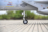Name: F15031.jpg