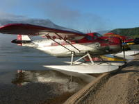 Name: Husky at shuswap.JPG