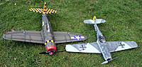 Name: IMG_1790mini.jpg
