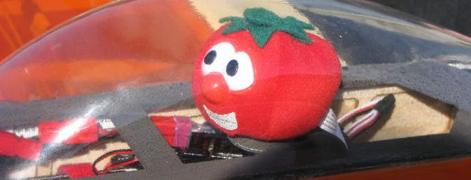 Bob the Tomato at home in the Senior's