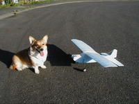 Name: P5150188.jpg