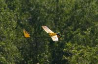 Name: Aero Bird 9476.jpg Views: 133 Size: 92.9 KB Description: