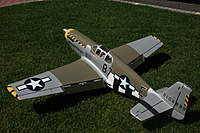 Name: Mustang 011.jpg