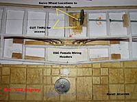 Name: Wing_011.jpg