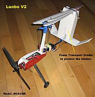 Name: Luobo_012.JPG