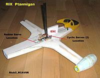 Name: Ptarmigan_010.JPG