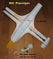 Name: Ptarmigan_011.JPG