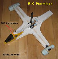 Name: Ptarmigan_012.JPG