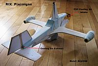 Name: Ptarmigan_020.JPG