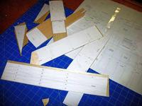 Name: Pfz 2.jpg