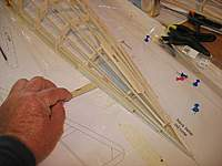 Name: ms 39.jpg