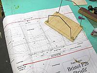 Name: Brisfish 2.jpg