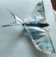 Name: _20140629_185320.JPG Views: 23 Size: 240.8 KB Description: Another photo of the raptor tail.