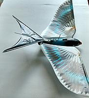 Name: _20140629_022504.JPG Views: 27 Size: 306.3 KB Description: Another photo of the barn swallow tail.