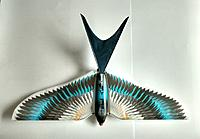 Name: IMG_20140714_223956.jpg Views: 14 Size: 453.0 KB Description: The most recent narrower swallow tail.