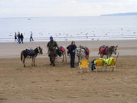 Name: DSCF1401.jpg