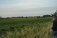 Name: DSC01245.jpg Views: 146 Size: 184.2 KB Description: It came down somewhere over there