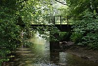 Name: DSC08763.jpg