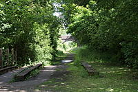 Name: DSC08767.jpg