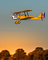 Name: cw Centred Jeff Tiger Moth-9487.jpg
