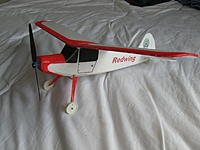 Name: Redwing 003.jpg